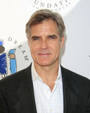 Henry Czerny Stock Photos