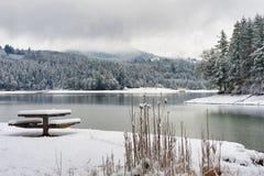 Free Henry Hagg Lake Winter Landscape Stock Photos - 104016483