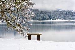 Henry Hagg Lake winter landscape Royalty Free Stock Image