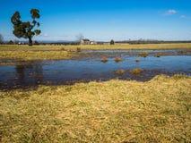 Henry Hill au champ de bataille de Manassas images stock