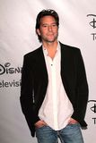 Henry Ian Cusick at the Disney ABC  Royalty Free Stock Photo