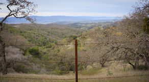 Henry W Coe State Park near Morgan Hill CA Royalty Free Stock Photo