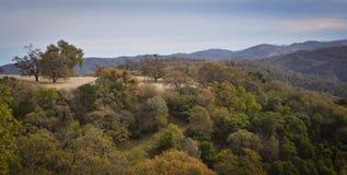 Henry W Coe State Park near Morgan Hill CA Stock Image