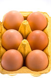 Hens egg Stock Photos