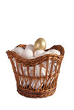 Hens eggs with gold one in a basket shot. In studio on white Stock Photography