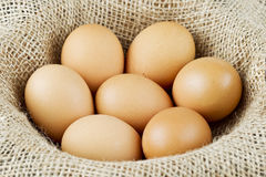 Hens free range eggs Stock Photo