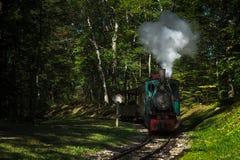 Henschel & vapor do motor do filho no sinal da parada de assobio Fotos de Stock Royalty Free
