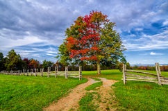 Hensley Settlement autumn colors Stock Photos