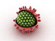 Hepatite Imagem de Stock