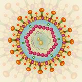 Hepatitis B virus. Background. Eps 10. Stock Photos