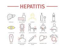 Hepatitis line icon Infographics. Vector signs for web graphics. Hepatitis line icon Infographics. Symptoms, Treatment. Vector signs for web graphics Stock Photos