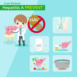 Hepatitis A prevent. Cute cartoon doctor with hepatitis A prevent concept Royalty Free Stock Image