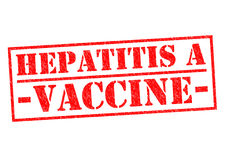 HEPATITIS A VACCINE. Red Rubber Stamp over a white background Stock Images