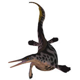 Hepehsuchus στο λευκό Στοκ Εικόνες
