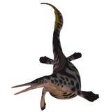 Hepehsuchus op Wit Stock Afbeeldingen