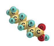 Heptanoic (enanthic) acid molecule  on white Stock Photography