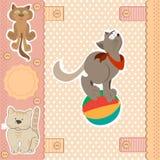 Herói ajustado do scrapbook do gato Foto de Stock