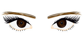 Her eyes Stock Photo