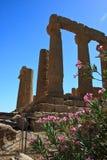 Hera świątynia - Agrigento Obraz Stock