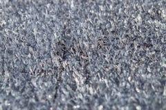Hera branca A textura da neve, cristais fotos de stock royalty free