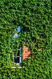 Hera coberta de construção Fotografia de Stock Royalty Free