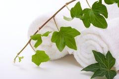 Hera e toalhas Imagens de Stock