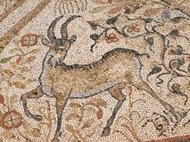 heraclealyncestismacedonia mosaik Arkivfoton