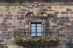 heraldic экран Стоковое Фото