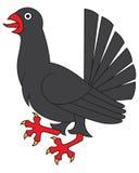 Heraldic bird, grouse Royalty Free Stock Photo