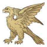 Heraldic Griffin Stock Photos