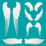 Heraldic Wings Set for Tattoo or Mascot Design stock illustration