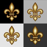 Heraldry design elements Stock Photography