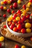 Herança orgânica Cherry Tomatos Imagens de Stock