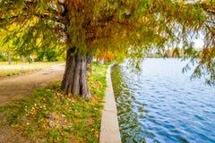 Herastrau公园在布加勒斯特,罗马尼亚 库存照片