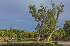 Herastrau公园在布加勒斯特,罗马尼亚 免版税库存图片