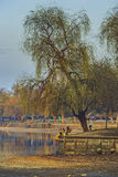 Herastrau park, Bucharest, Romania Stock Images