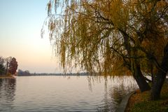 Herastrau. The view of the lake from the park Herastrau, in Bucharest, Romania Royalty Free Stock Photo
