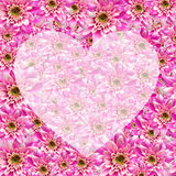 Herat on flowers Royalty Free Stock Photo