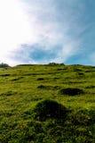 Herauf den Hügel Stockfoto