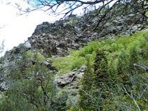 Herauf in die Berge in Ogden Utah Lizenzfreies Stockfoto