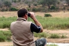 Heraus auf Safari Lizenzfreie Stockfotos