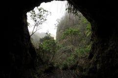 Heraus schauen durch eine Höhle Lizenzfreie Stockfotografie