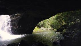 Heraus schauen von der natürlichen Brücke in springbrook Nationalpark stock video