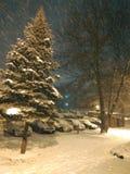 Heraus schneien mein Haus stockfoto