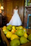 Heraus-von-Fokus Braut hinter einem Tellersegment der Birnen Stockfotografie