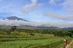 Heraus vorangehen zu Gipfel mt-rinjani Lombok Lizenzfreies Stockfoto