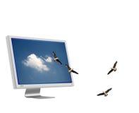 Herauskommen Lizenzfreies Stockfoto