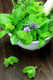 Herb Royalty Free Stock Photography