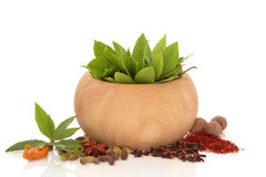 Herb And Spice Selection Royalty Free Stock Photography