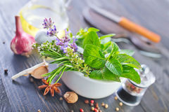 Herb and aroma spice Royalty Free Stock Image